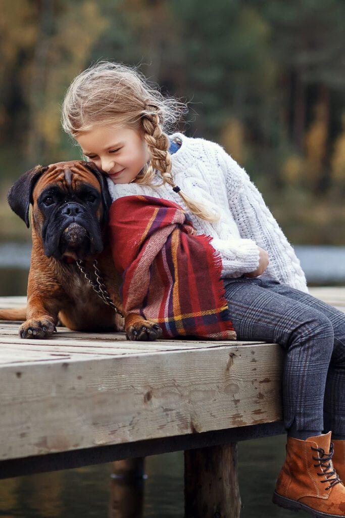 Boxer Dog With Girl