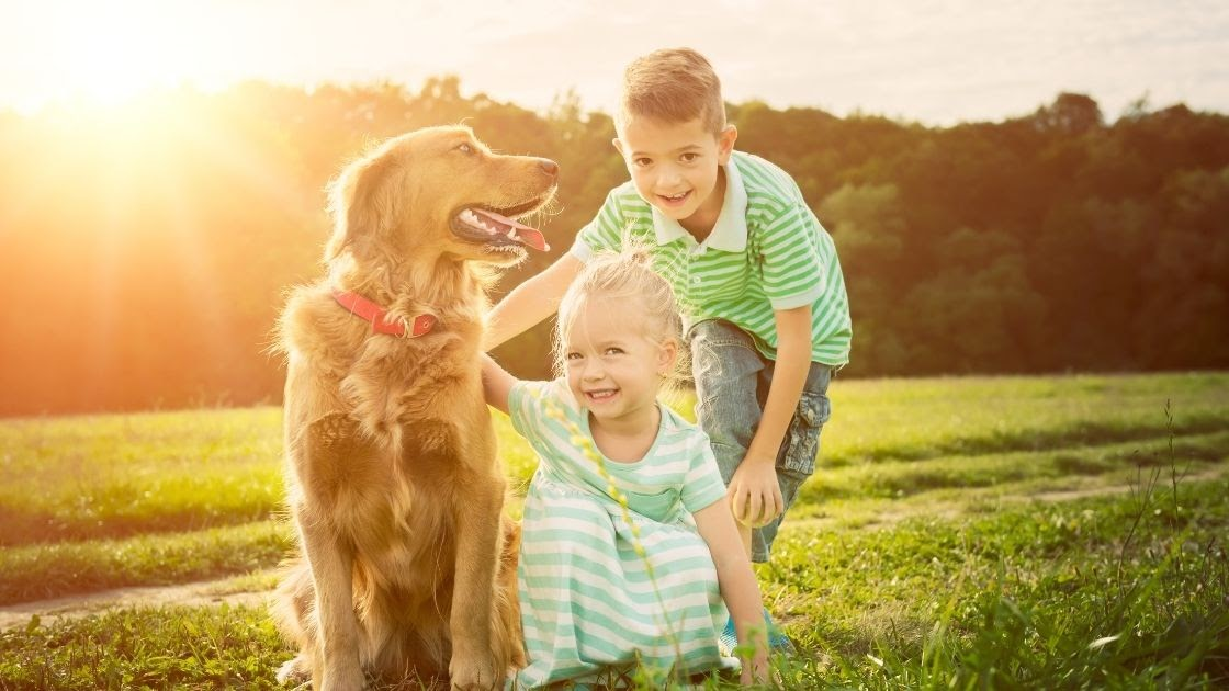 Some Rules For Kids Around Golden Retrievers